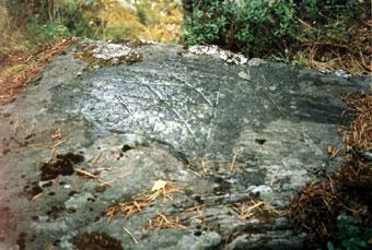 Петроглиф на камне в Вятикке